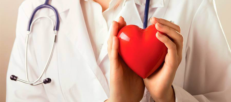 Vascular Clínica inclui cardiologia entre as especialidades médicas que atende